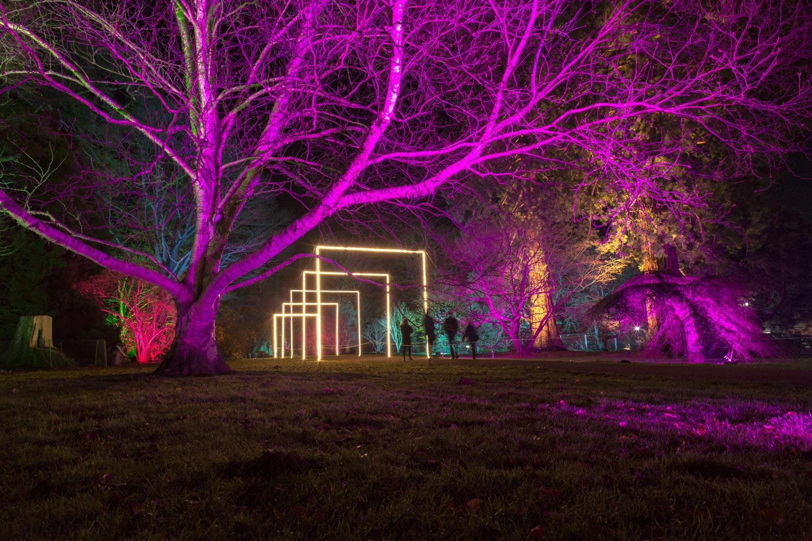 Westonbirt Enchanted Christmas LED Strip
